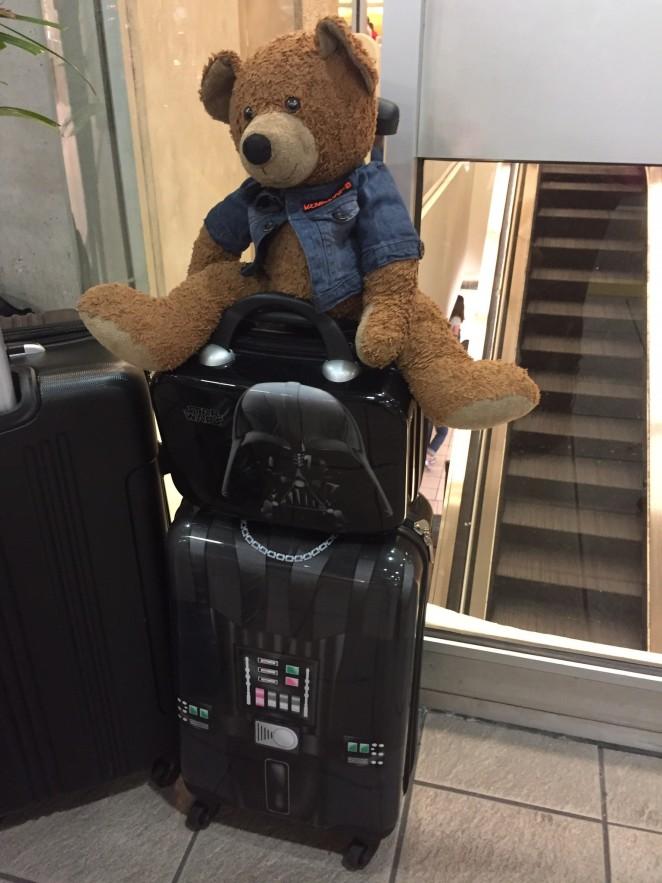 victoria luggage